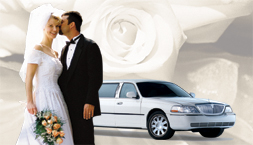 Limo website search engine optimization